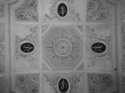 Palazzo Terzi: particolare del soffitto con stucchi ottocenteschi